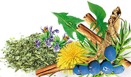 Functional Teas Fito Apteka - STEADY SUGAR