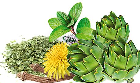 Functional Teas Fito Apteka - HEALTHY LIVER