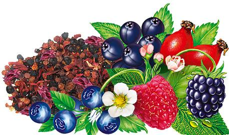 Dried Fruit - Forest Fruits
