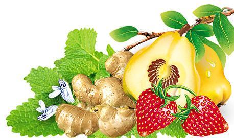 Herbaty Ziołowo-Owocowe Sunny Garden