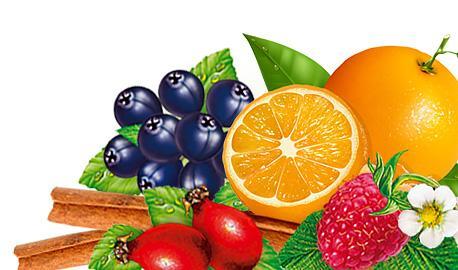 Fruit Teas Express - Winter Fancy