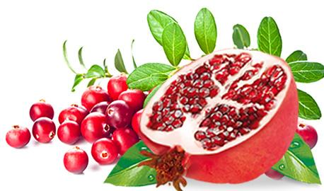 Exclusive Sunny Garden Teas - Cranberry with Pomegranate