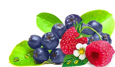 Exclusive Sunny Garden Teas - Chokeberry with Raspberry