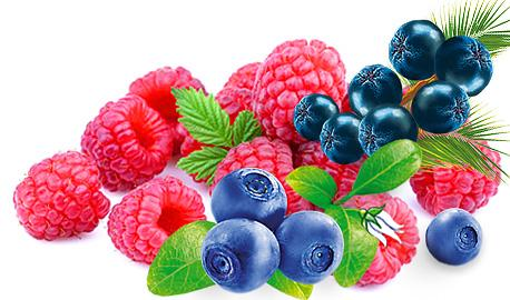 Exclusive Sunny Garden Teas - Raspberry with Bilberry and Açai