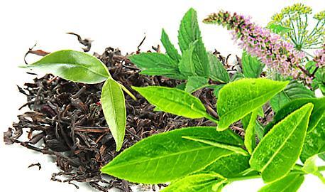 Herbaty Odchudzające - Sylwetka LUX Nr 1